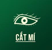 f2h-small_catmi